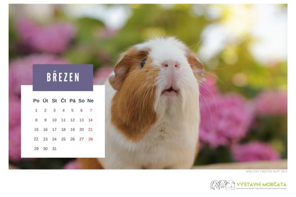 kalendar_morcata_nahled_1