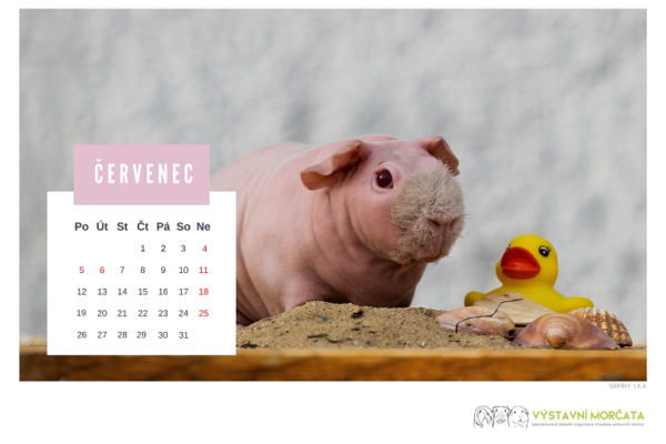 kalendar_morcata_nahled_2