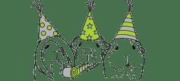 Výstavní morčata